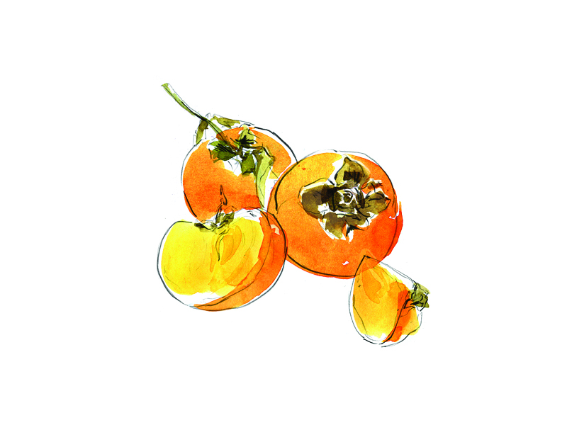 Persimmon_heather